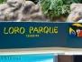 Loro Parque - ogród zoologiczny inny niż wszystkie...